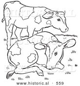 Historical Vector Illustration of 2 Friendly Farm Cows - Outlined Version by Al
