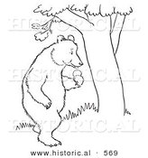 Historical Vector Illustration of a Bear Standing with an Apple Beside a Tree - Outlined Version by Al