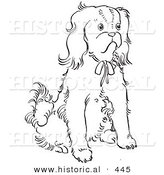 Historical Vector Illustration of a Cavalier King Charles Spaniel Dog Sitting and Staring - Outlined Version by Al
