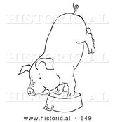 Historical Vector Illustration of a Circus Pig Doing a Handstand on a Kitchen Pot - Outlined Version by Al