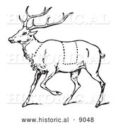 Historical Vector Illustration of a Deer Featuring Outlined Butcher Sections of Venison Cuts - Black and White by Al