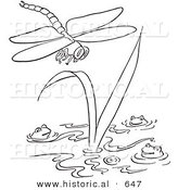 Historical Vector Illustration of a Dragonfly Flying over Happy Frogs in a Pond - Outlined Version by Al
