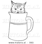 Historical Vector Illustration of a Funny Kitten Playing in a Cup - Outlined Version by Al