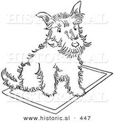 Historical Vector Illustration of a Scottie Dog Sitting on a Rug - Outlined Version by Al