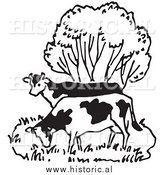 Illustration of a Couple of Cows Grazing Beside a Tree - Black and White by Al