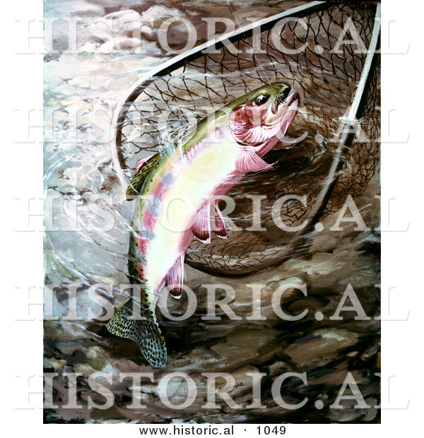 Historical illustration of a golden trout in a fishing net for Fishing without a license california