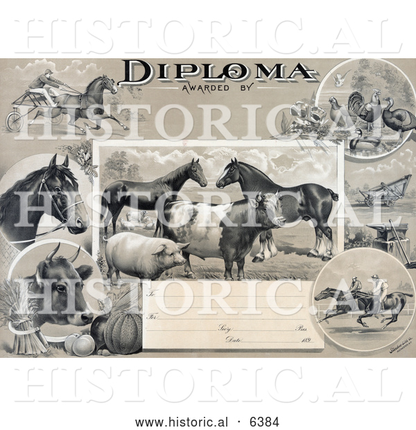 Historical Illustration of an Agricultural Diploma with Jockeys Racing Horses, Livestock, Produce and Farming Tools