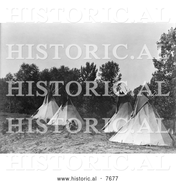 Historical Photo of Assiniboine Indian Camp with Tipis 1908 - Black and White