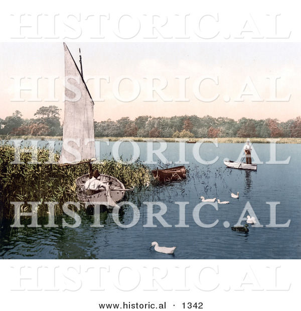Historical Photochrom of Ducks and Men in Boats on the Trinity Broads Ormesby Norfolk Engngland