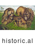 Historical Illustration of a Family of Lions in Grass with Babies by JVPD