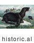 Historical Illustration of Sea Lions on Ice Bergs near Ships by JVPD