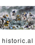 Historical Illustration of the Battle of New Orleans 1814 by JVPD