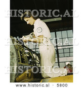 Historical Photo of a Female Riveter Assembling Airplanes by Al