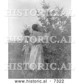 December 13th, 2013: Historical Photo of Buffalo Berry Gatherers 1908 - Black and White by Al