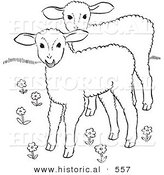 Historical Vector Illustration of 2 Lambs in a Field of Flowers - Outlined Version by Al
