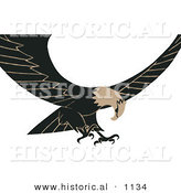 Historical Vector Illustration of Brown and Black Bald Eagle in Flight with Its Wings Spread Open by Al