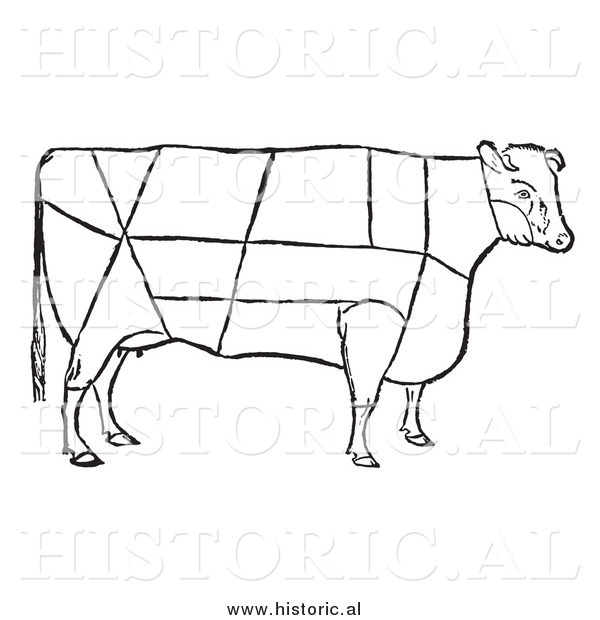 Clipart of a Cow with Beef Cuts Outlined - Black and White Drawing