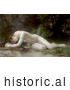 Historical Illustration of a Nude Woman Lying over a Stream, Biblis by William-Adolphe Bouguereau by JVPD